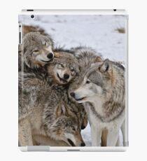 One Big Happy Family iPad Case/Skin