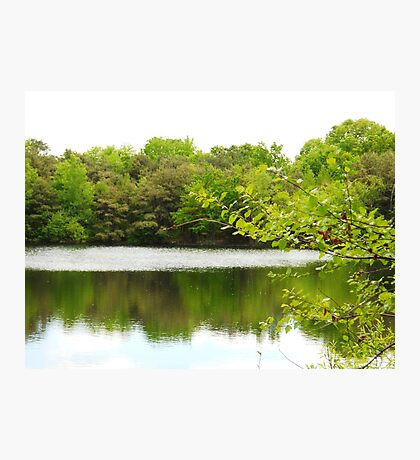 Peaceful Green Photographic Print