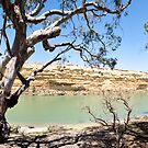 Blanchetown Cliffs by Dave  Hartley