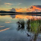 Morning - Narrabeen Lakes, Sydney - The HDR Experience by Philip Johnson