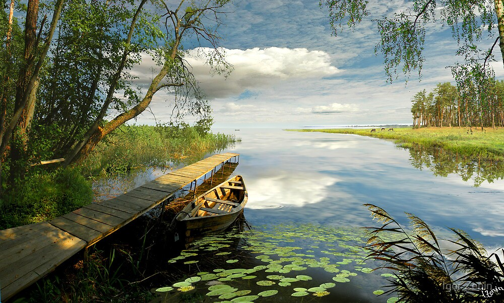 Wetlands by Igor Zenin