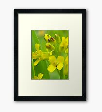 oh its all good :) Framed Print