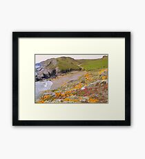 Devon:  Colourful Lichen at Soar Mill Cove Framed Print