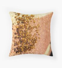 Spiderlings Throw Pillow
