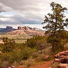 Sedona, Arizona  by Barb White