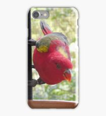 Inquisitive Multi-Coloured Parrot iPhone Case/Skin