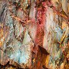 Tasmanian Abstract .1 by Alex Preiss