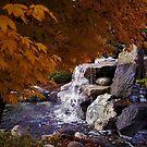 Serene Scenery by EvePenman