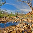 Gammon Ranges Creekbed by Richard  Windeyer