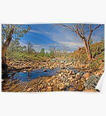 Gammon Ranges Creekbed Poster
