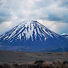 Mt Ngauruhoe by bazcelt