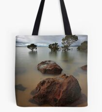 Approaching the Forest Tote Bag