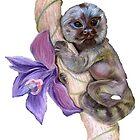 Pygmy Marmoset by MariaSibireva