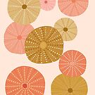 Sea Urchins in Gold + Coral by latheandquill