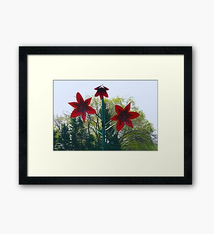 World's Largest Lily Framed Print