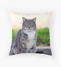 Josie The Pussy Cat Throw Pillow