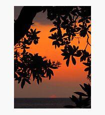 Lámina fotográfica Ohia Sunset