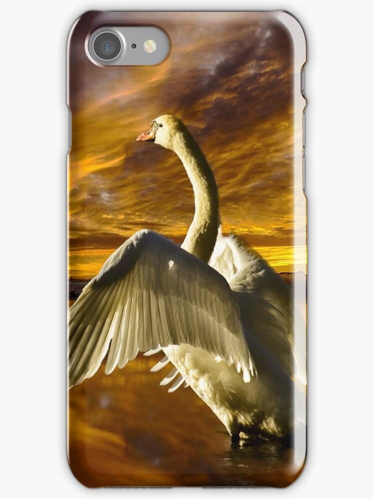 Swan Lake by LudaNayvelt