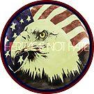 American Pride: Heritage Not Hate by EvePenman