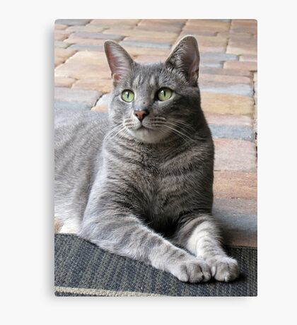 Handsome Boy Canvas Print