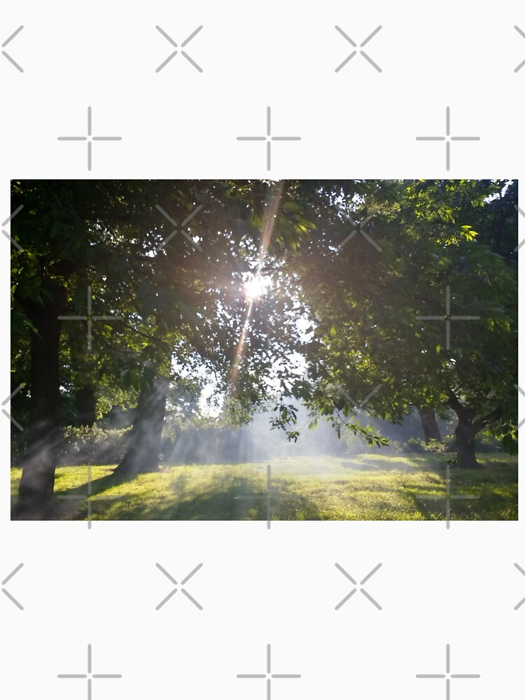 Merch #11 -- Smoky Tree Sun Rays - Landscape Shot by Naean
