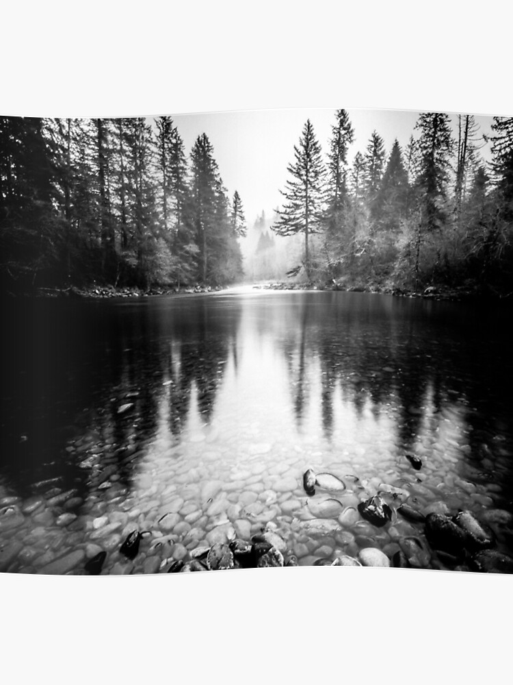 Forêt De Réflexion Lake Réflexion De Leau Nature Noir Et Blanc Poster