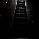Hidden Places, Ladder by Darren Glendinning