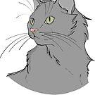 Gray Cat  by rmcbuckeye