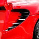 Red Lotus I by mojo1160