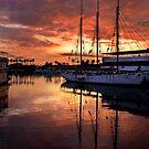 Regenbogen-Hafen-Sonnenuntergang von Celeste Mookherjee