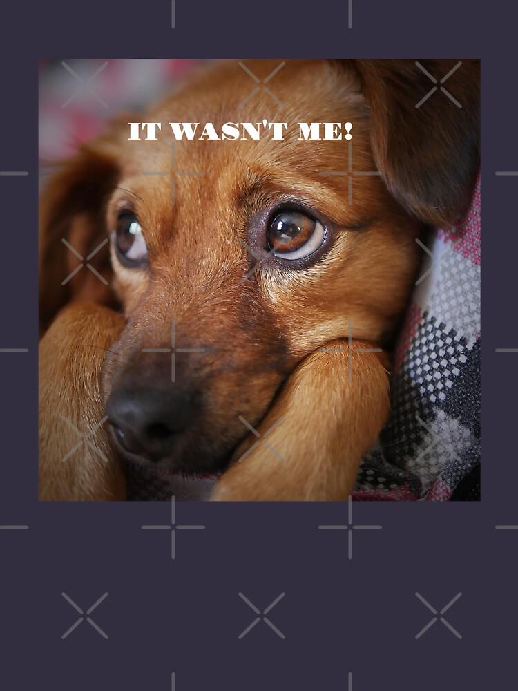 "Funny Dog Shirt, ""It wasn't me"" by maryspeer"