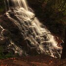 Ganoga Falls, looking downward by Aaron Campbell