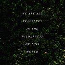 Wilderness by GalaxyEyes