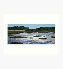 Thorneside: Mud, Water & Sky Art Print