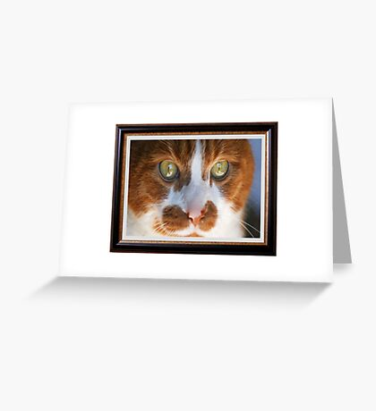 Oliver Greeting Card