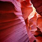 Rattlesnake Canyon by Gregory Ballos