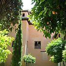 The grandeur of Granada  by LynOHara