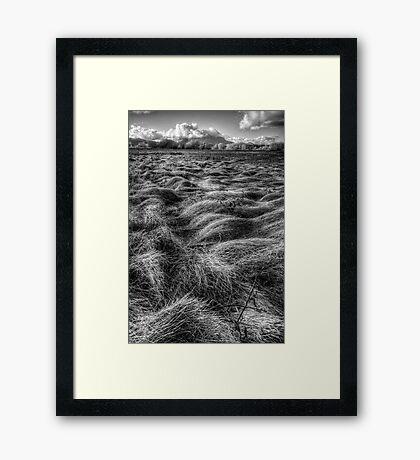 Straw Flow Framed Print