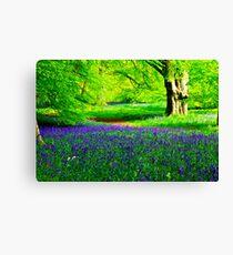 Bluebell Wood - Thorpe Perrow #2 Canvas Print