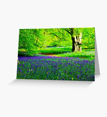 Bluebell Wood - Thorpe Perrow #2 Greeting Card