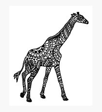 Printed Giraffe Photographic Print