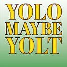 YOLO or is that YOLT by asktheanus