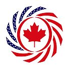 Canadian American Multinational Patriot Flag Series by Carbon-Fibre Media