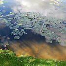 Lake by rightonian
