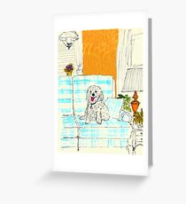 White Dog on Couch Greeting Card