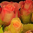 Rose Bouquet( for Sherri..Welcome back) by aussiedi