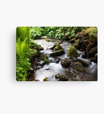 A Gentle Stream Canvas Print