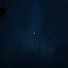 Good Evening Moon by mojo1160