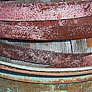 Rusty Barrel by Monnie Ryan