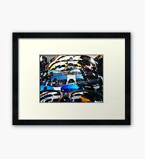 The Shades Shelf Framed Print